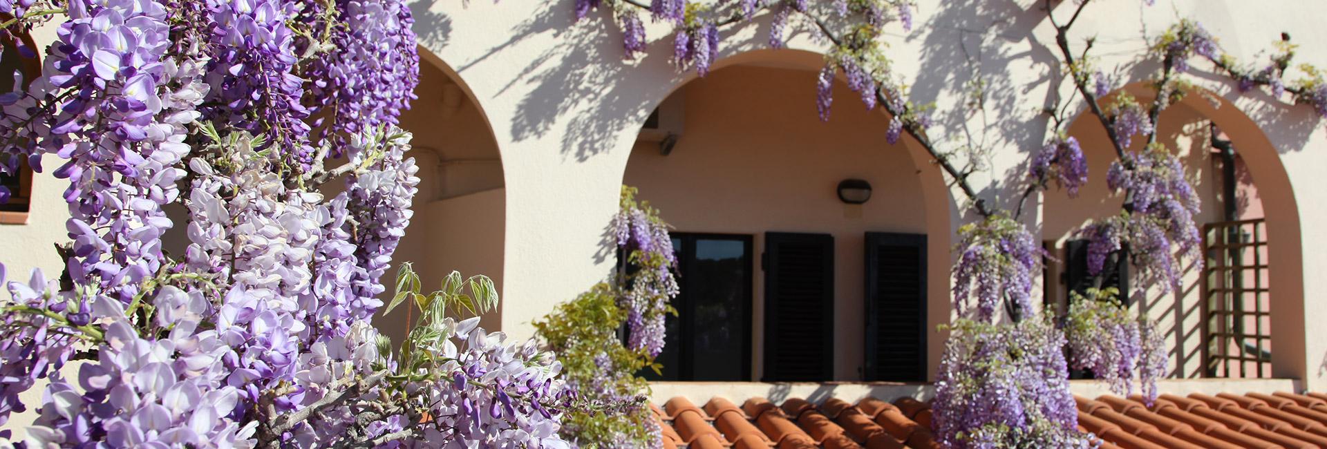 Hotel Galli Fetovaia